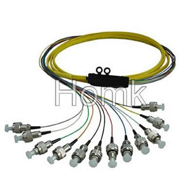 FC 12 core Pigtail
